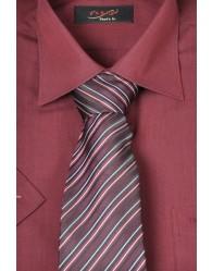 Nyakkendő 19